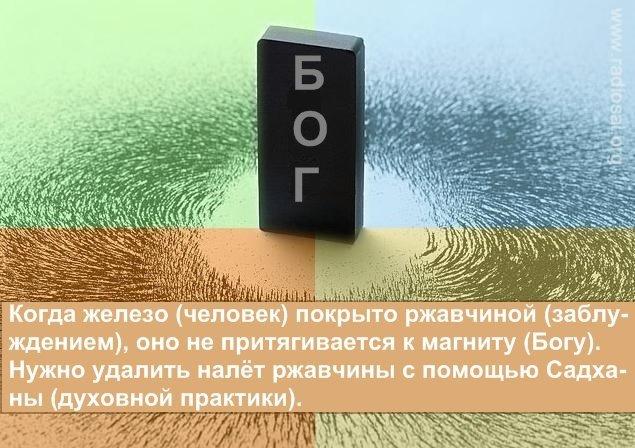 post-2364-0-13685300-1359695014_thumb.jpg