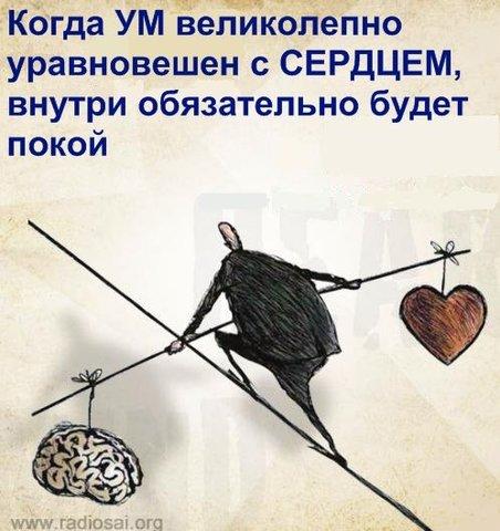 post-2364-0-64262300-1360044336_thumb.jpg
