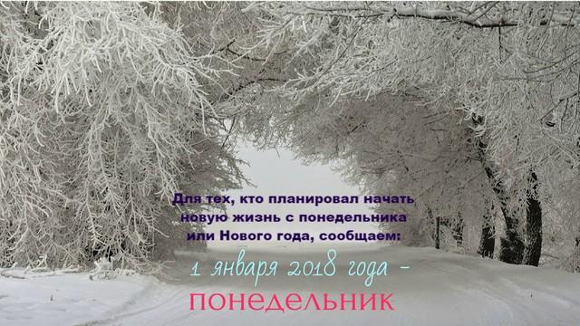 tmb_100654_6328.thumb.jpg.85c249e1d1d83b410046e14e6020038d.jpg