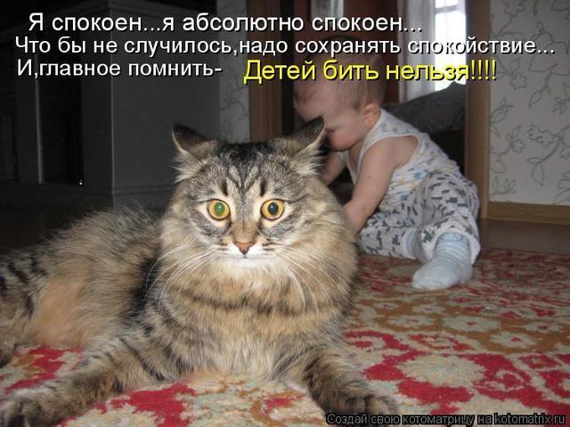 342598.thumb.jpg.475a2a0a6d83fa3404a6549a7b7b5bcf.jpg
